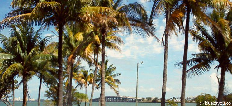 Blick von Miami auf den nach Miami Beach führenden Julia-Tuttle-Causeway.