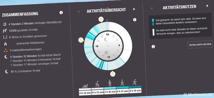 Der Polar Loop Activity Tracker: Ein Tag über das Online-Konto im Überblick.