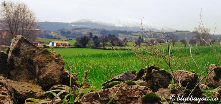 Grüne Wiesen vor den schneebedeckten Bergen auf dem Camino del Norte.