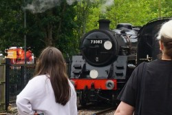 """Spectators watching BR Standard, No.73082 """"Camelot"""" at East Grinstead Station"""