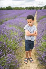 MTP_lavenderfarm_14