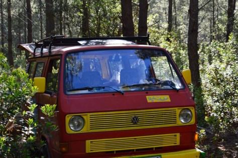 az autónk a francia erdőben