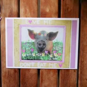 love me dont eat me pig vegan postcard