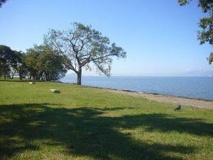 湖岸から彦根方面を望む