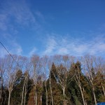 園地からの青空