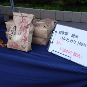 自家栽培米コシヒカリ