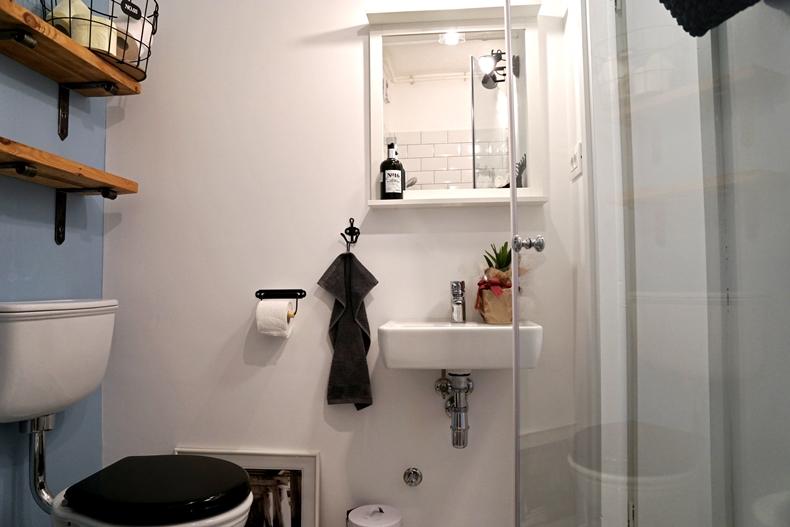 bathroom downstairs new