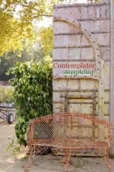 Contemplator/Impulsive