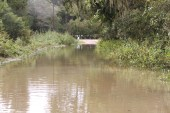Water covers the main entrance road into Sam Houston Lake Estates on Tuesday.
