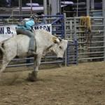 2019dayton FFA rodeo 24