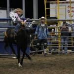 2019dayton FFA rodeo 55