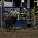 2019dayton FFA rodeo 59