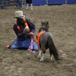 2019dayton FFA rodeo 62