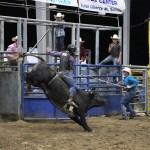 2019dayton FFA rodeo 75