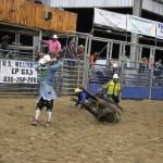 2019dayton FFA rodeo 77