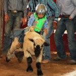 0421rodeo youth events 4