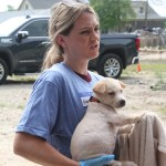 0521dog rescue 3