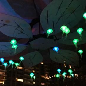 Jellyfish @Boston Public Gardens