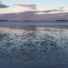 Gorgeous Sunset//winter @quincy beach