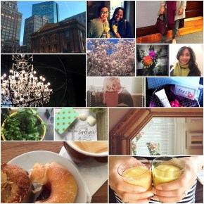 April Highlights on BlueBootsGo