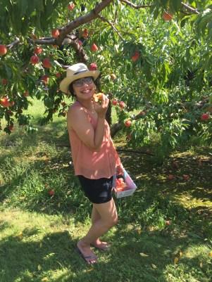 BlueBootsGo at Cider Hill Farm - Summer Peaches