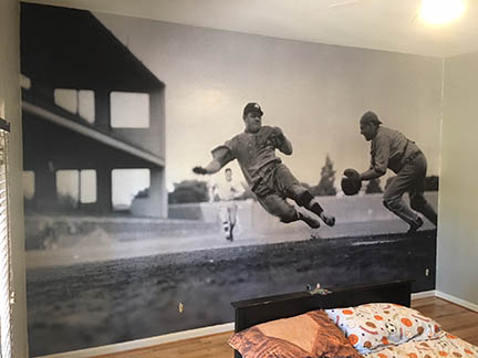 Sports Wall Mural in Scottsdale brings the action inside
