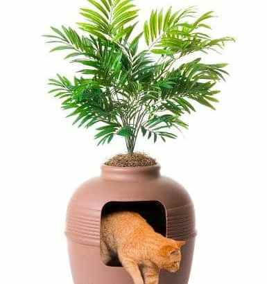 Cat Litter Boxes for Tiny Homes