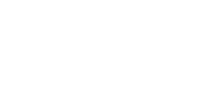 Blue Digital Full Service Digital Marketing Agency
