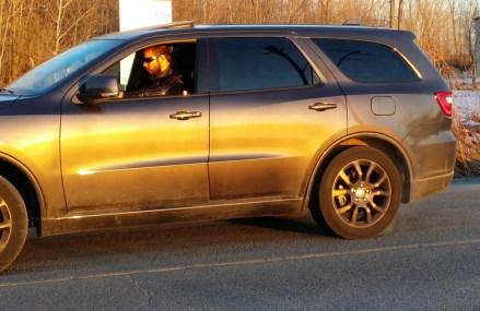 2018 Dodge Durango 5.7 R/T R4 – Third Gear Burnout Ontario California 2018
