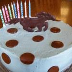 Recent Birthday Cakes Blue Egg Bakery