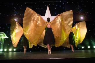 Gold Wing Dancers