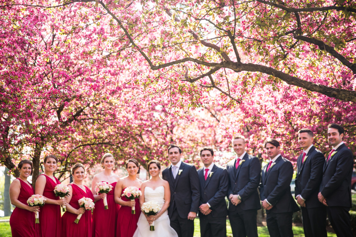 Lauren and Jimmy   Wedding at the Providence Biltmore   Wedding party under the blossoms