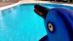 antalya yüzme havuzu konyaaltı sahilde oteller blue garden hotel (27)