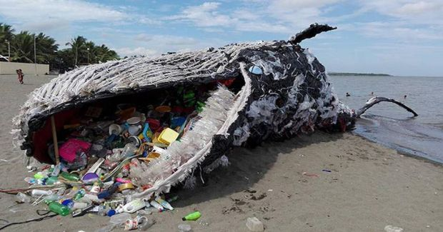 https---blogs-images.forbes.com-trevornace-files-2018-04-whale-plastic-dead