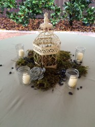 Reception tables can have more elements than just floral, birdcages, moss, succulents and rock bring nature to the table