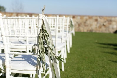 Loose Olive Branch sprigs displayed as elegant chair ties for ceremony decor.