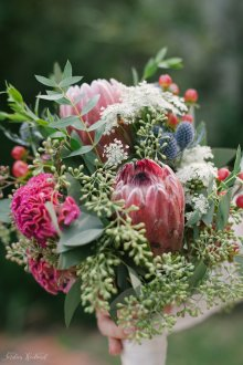 Brides bouquet with thistle, proteas, queens anne lace, red hypericum berries, and a eucalyptus mix. Brides maids with cream and blush roses and eucalyptus.