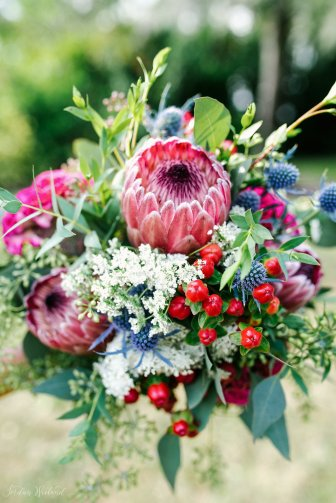 Brides bouquet with thistle, proteas, queens anne lace, red hypericum berries, and a eucalyptus mix.