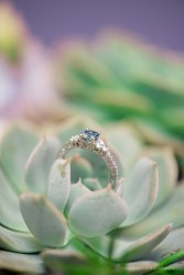 Engagement Ring on a succulent