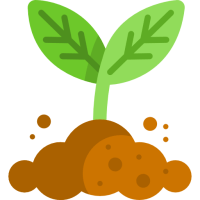 Bluegrass Learning Solutions - eLearning Strategy State 1 Sprout