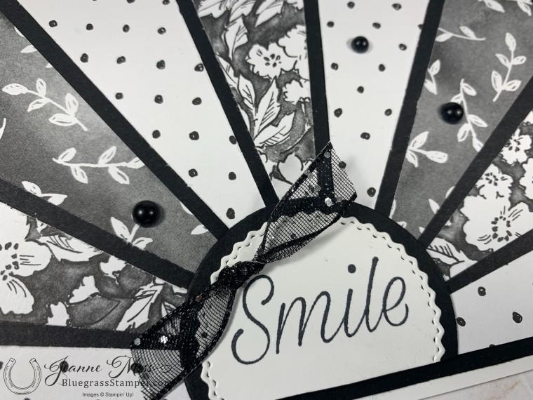 Black and White Starburst Detail