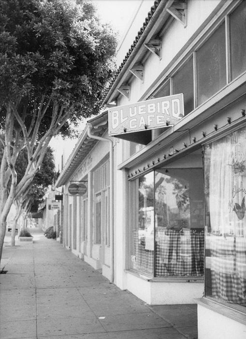 Bluebird, Street view
