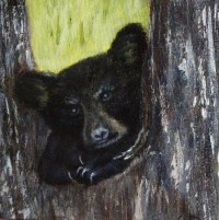 What You Lookin' At?, Acrylic on Canvas, 6 x 6inches, Copyright Wendie Donabie SOLD