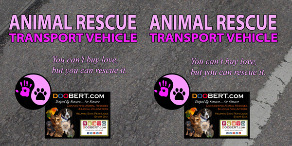 0LR-Rescue Car Magnet - Pink