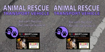0LR-Rescue Car Magnet - Purple