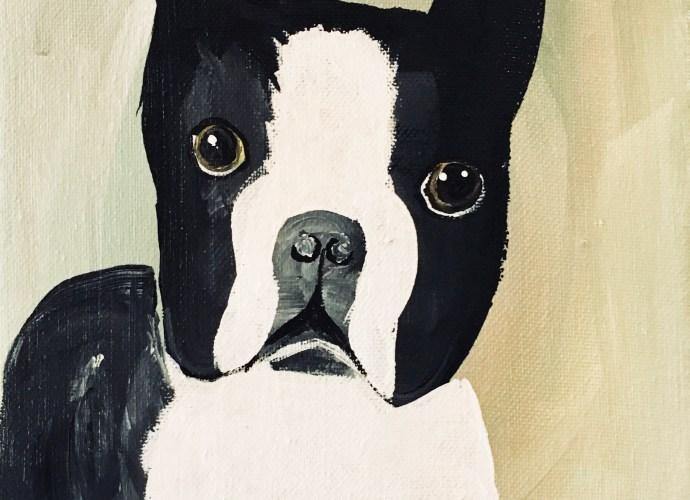 Boston Terrier 8x10 Canvas