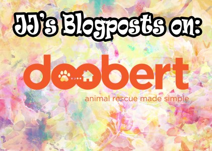 My April Doobert Blog Post