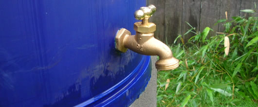 Reduce Water Waste by Installing a Rainwater Harvesting System