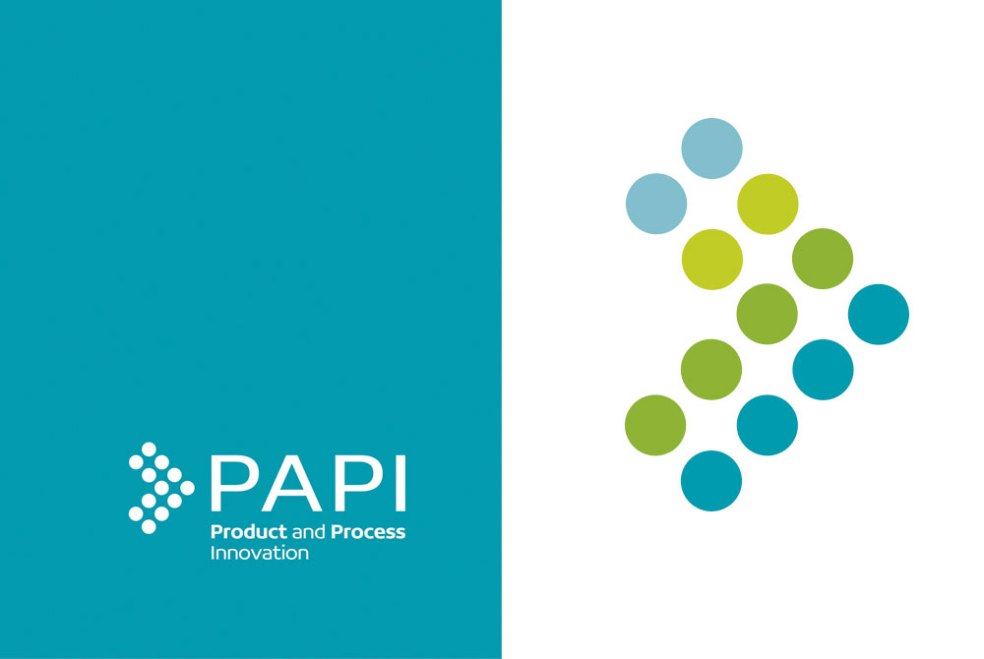 PAPI logo and motif
