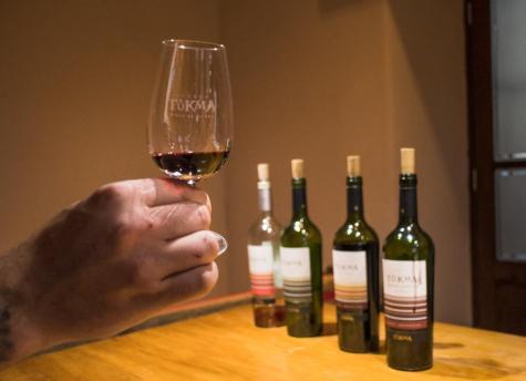 Degustacije vin v Argentin - 4vina pri degustaciji v vinski kleti Tukma
